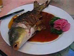 ying-yang-fish