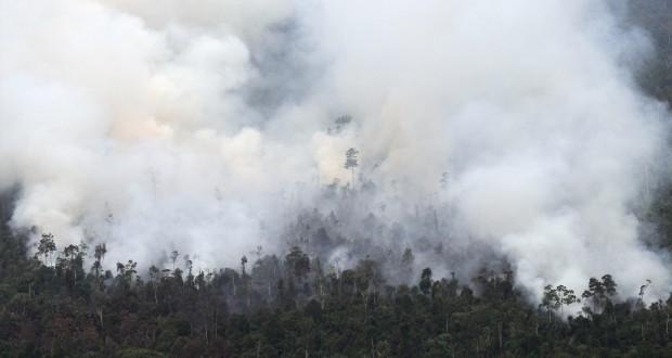 indonisiafire