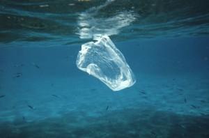 plastikothalassa